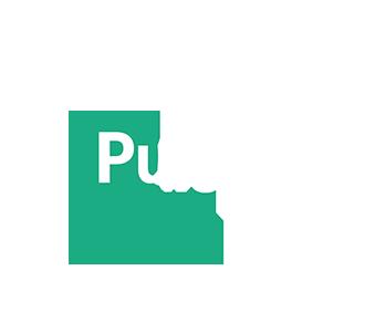 Be pulsar